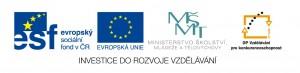 logo_MŠMT